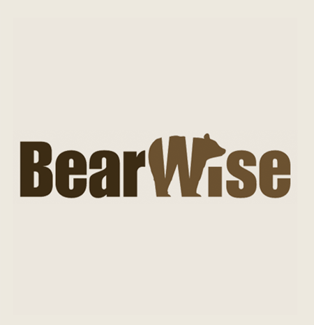 Bear Wise Page Logo Final